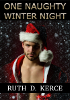 One Naughty Winter Night